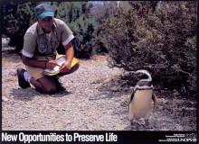 undp_po_preserve_life